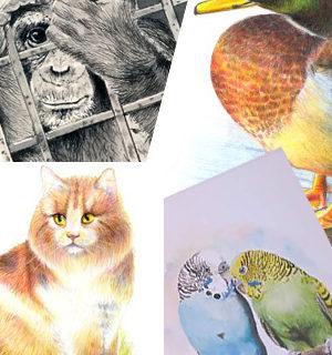 Vorschaubild für Tier