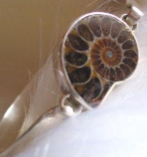 Ammonit-Armreif