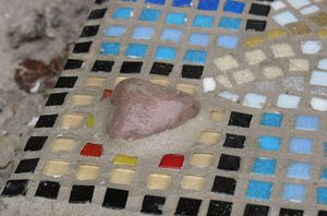 Der Hund liebt Steine