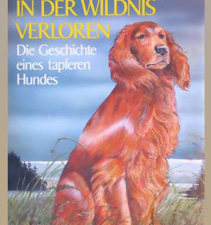 Buchillustrationen: In der Wildnis