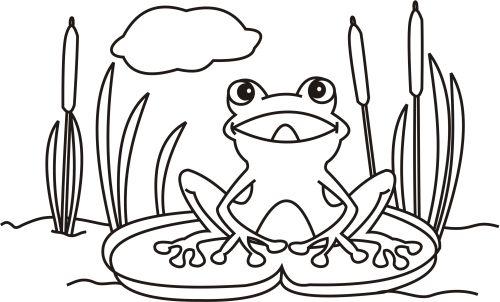 Frosch zum ausmalen