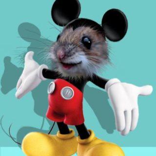 Mickey Maus comic