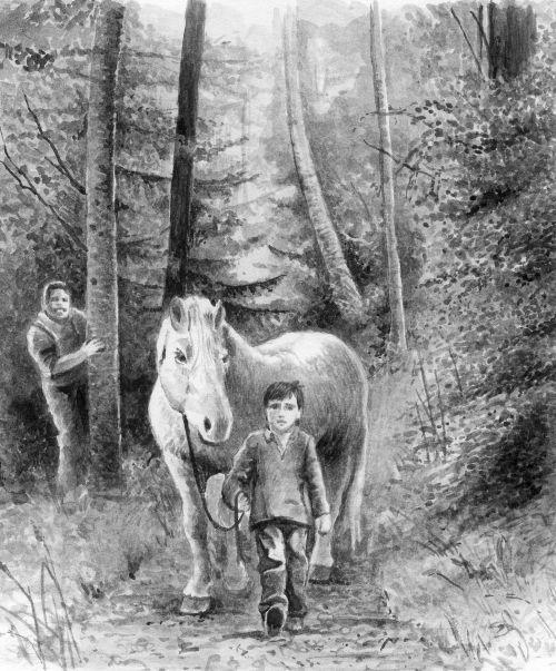 Pferd und sein Besitzer