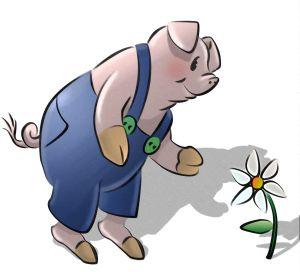 Das Schwein als comic