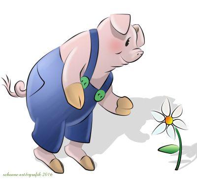 das achwiedummschwein
