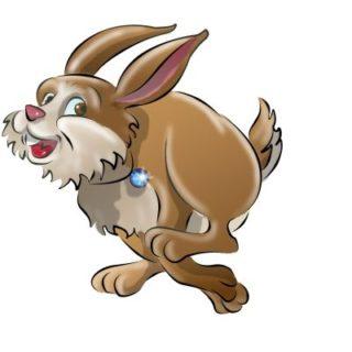 """Tiere-digital: """"Der Hase"""""""
