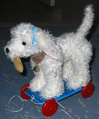 Hund auf Räder