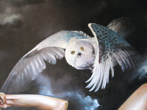 fliegende Schnee-Eule