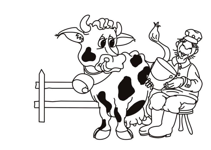 Der Bauer und die Kuh